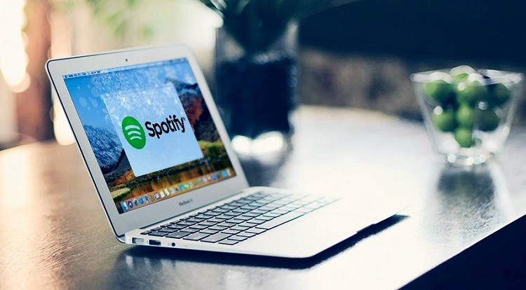 Spotify Web Player Not Working? Fix Errors - The News Region