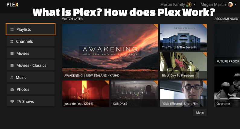 What is Plex? How does Plex Work?