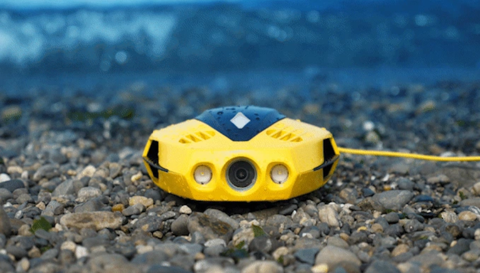 Underwater drone Chasing Dory