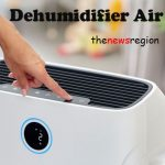 dehumidifier air purifier