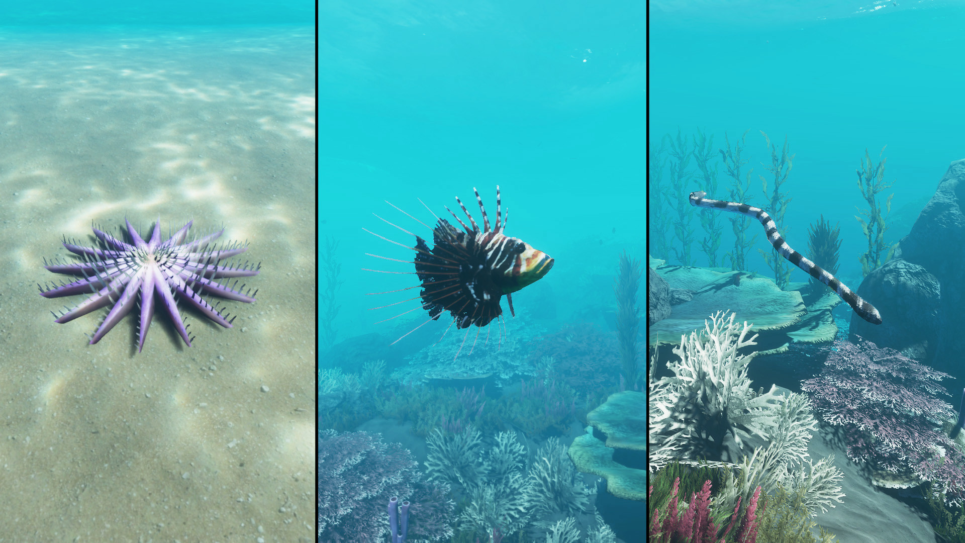 Stranded Deep PS4